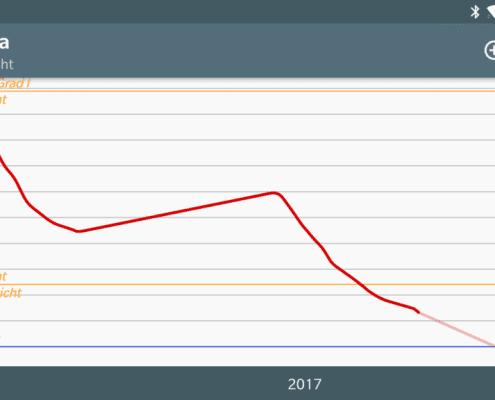 Gewichtsverlauf 2017