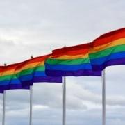 LGBTQIA True Name